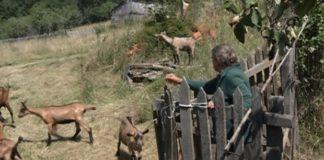 Selo Medragovac