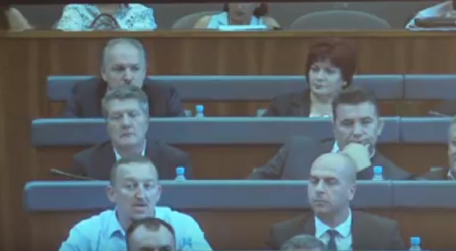 Simić i Milosavljević danas u Skupštini Kosova, foto: Zei