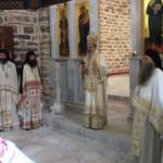 Episkop raško-prizrenski Teodosije