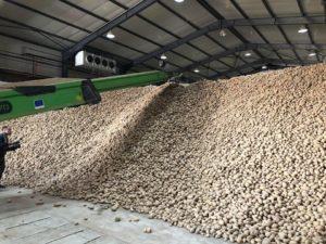 Skladište za krompire u Vučitrnu koje je doniralo kosovsko ministarstvo za poljoprivredu