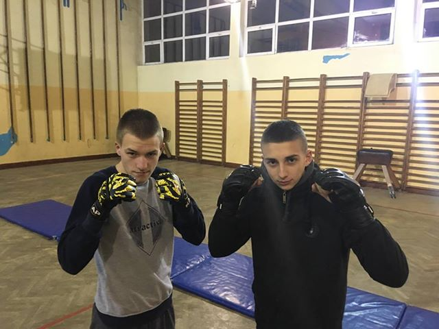 MMA Mantis