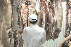Pokvareno meso
