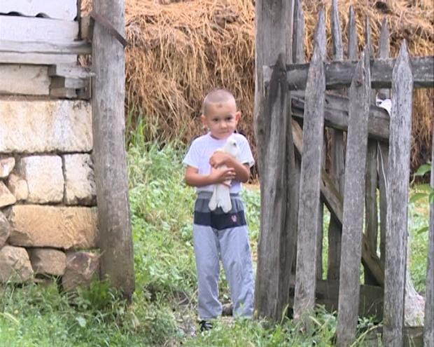 Selo Carevce