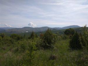 Bresnica, pogled ka dolini Ibra