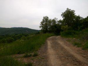 Bresnica, vrh Trepčinog dimnjaka