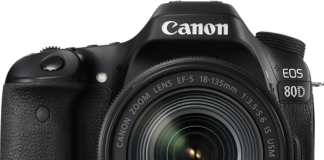 Canon EOS 80 18-135mm