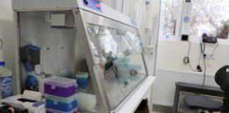 PCR Laboratorija KoSSev Korona Kosovska Mitrovica KBC