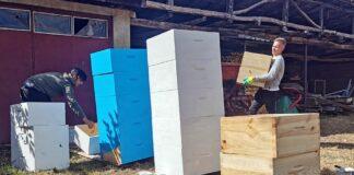 Polaznici ''Pčelinjeg kampa'' pripremaju košnice za farbanje